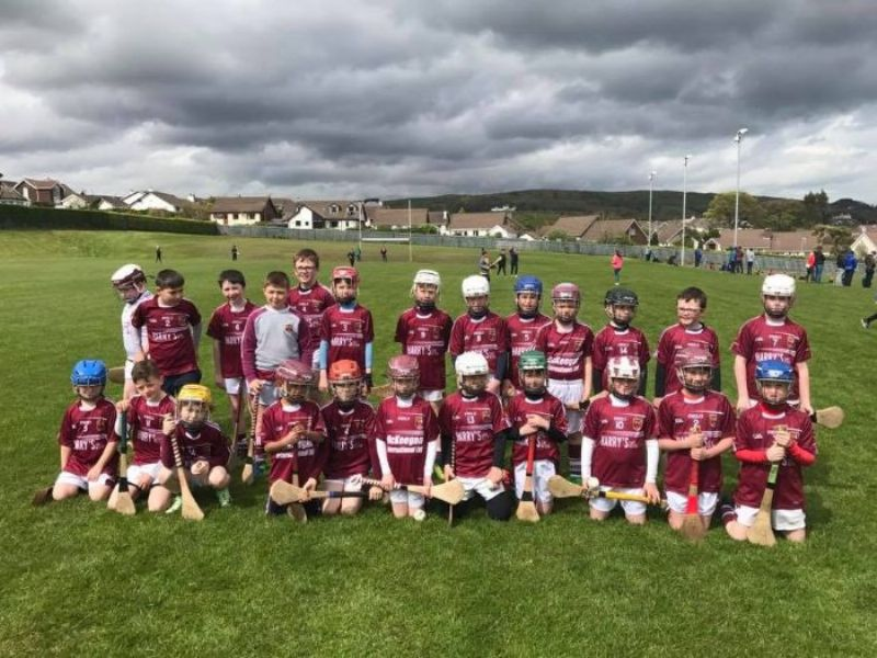 Our U10 Hurlers at the Half Time game